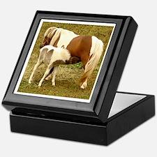 Horse Babies Keepsake Box