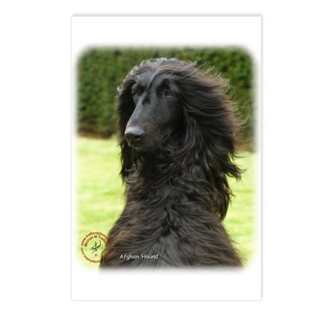 Afghan Hound 9T072D-081 Postcards (Package of 8)