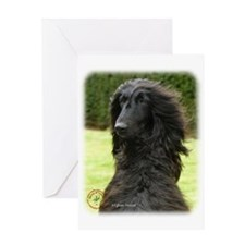 Afghan Hound 9T072D-081 Greeting Card