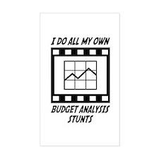 Budget Analysis Stunts Rectangle Decal