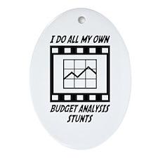 Budget Analysis Stunts Oval Ornament