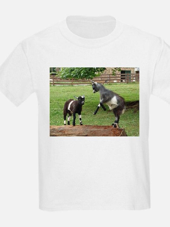 Pygmy Goat Kid s Clothing