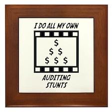 Auditing Stunts Framed Tile