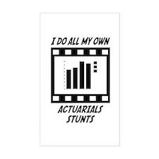 Actuarials Stunts Rectangle Decal