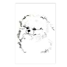 Pom Head 3 blk.&wh. Postcards (Package of 8)