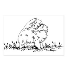 Pom on Pebbles Postcards (Package of 8)