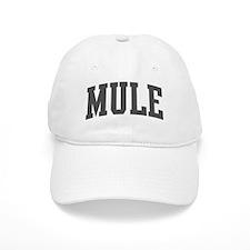 Mule (curve-grey) Cap