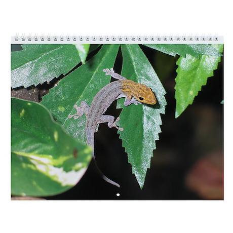 Royse Reptile Rescue Calendar