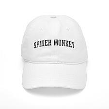 Spider Monkey (curve-grey) Baseball Cap