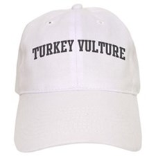 Turkey Vulture (curve-grey) Hat