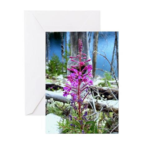 Fireweed Wildflower Greeting Card