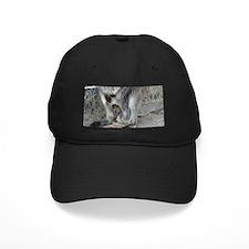 Wallaby Baseball Hat