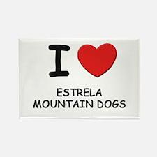 I love ESTRELA MOUNTAIN DOGS Rectangle Magnet (10