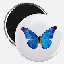 Blue Butterfly Magnet