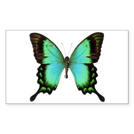 Green Butterfly Rectangle Sticker