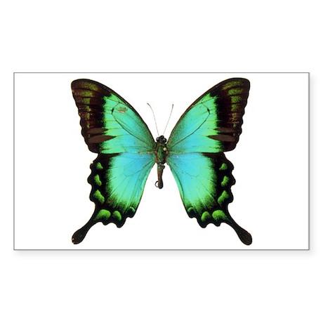 Green Butterfly Rectangle Sticker