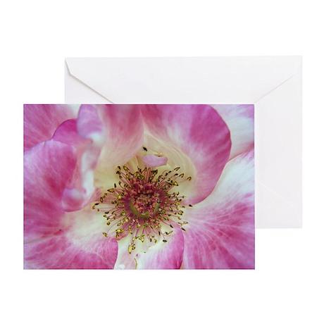 Grateful Pink Greeting Card