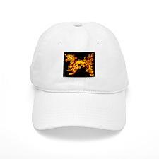 Old Fire Dragon Baseball Cap