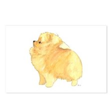 Pom Pup 6 months Postcards (Package of 8)