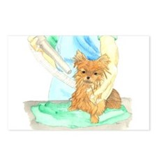 Pom Being Dried Postcards (Package of 8)