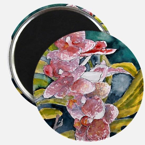 hybrid orchid flowers waterco Magnet