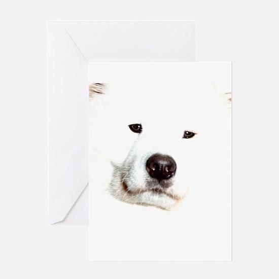 Samoyed Face Greeting Card