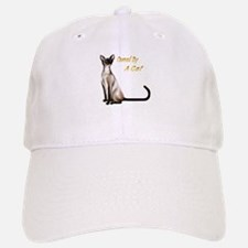 Owned By A Cat Baseball Baseball Cap
