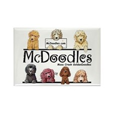McDoodles Logo Rectangle Magnet (100 pack)