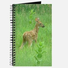 Spring Fawn Journal