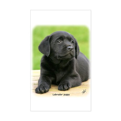 Labrador puppy 9Y267D-109 Sticker (Rectangle)