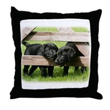 Labrador Pups 9Y415D-168 Throw Pillow