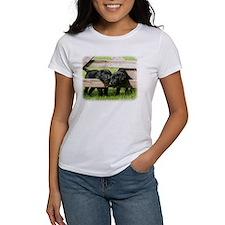 Labrador Pups 9Y415D-168 Tee