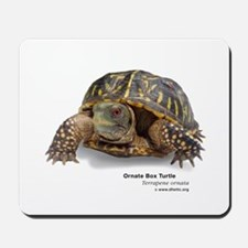 Ornate Box Turtle Mousepad