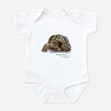 Ornate Box Turtle Infant Bodysuit