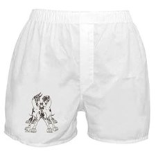 NCH Leaners Boxer Shorts