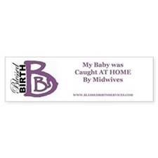 Caught at Home Bumper Bumper Sticker