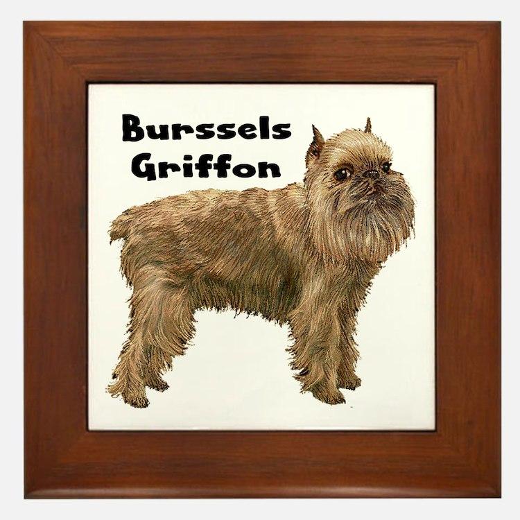Brussels Griffon Framed Tile
