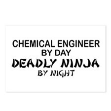 Chemical Engineer Deadly Ninja by Night Postcards