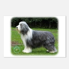 Bearded Collie 8R002D-16 Postcards (Package of 8)