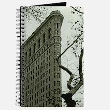 Unique Flatiron building Journal