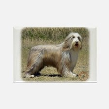 Bearded Collie 9P042D-005 Rectangle Magnet (10 pac