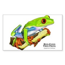 Red Eyed Tree Frog Rectangle Decal