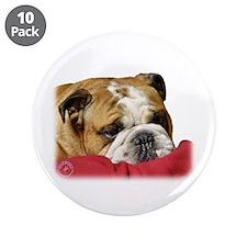 "Bulldog 9W099D-003 3.5"" Button (10 pack)"