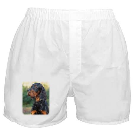 Gordon Setter 9Y109D-021 Boxer Shorts