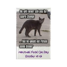 National Feral Cat Day Rectangle Magnet