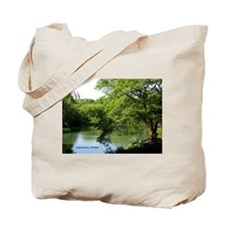 CENTRAL PARK LAKE Tote Bag