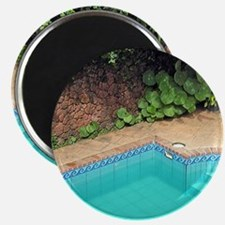 Pool Magnet