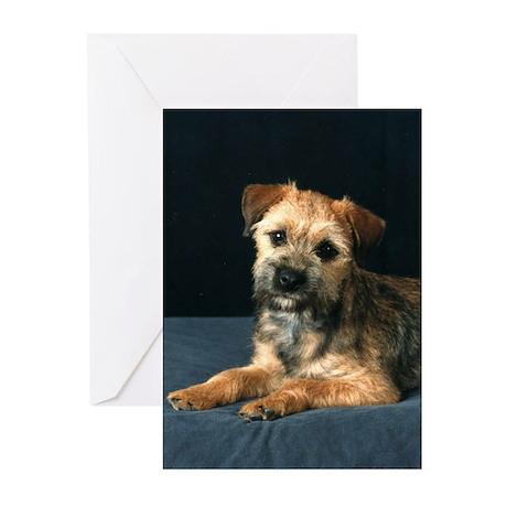 Border Terrier Greeting Cards (Pk of 20)