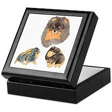 Blk. & Tan Pomeranian Collage Keepsake Box