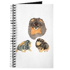 Blk. & Tan Pomeranian Collage Journal